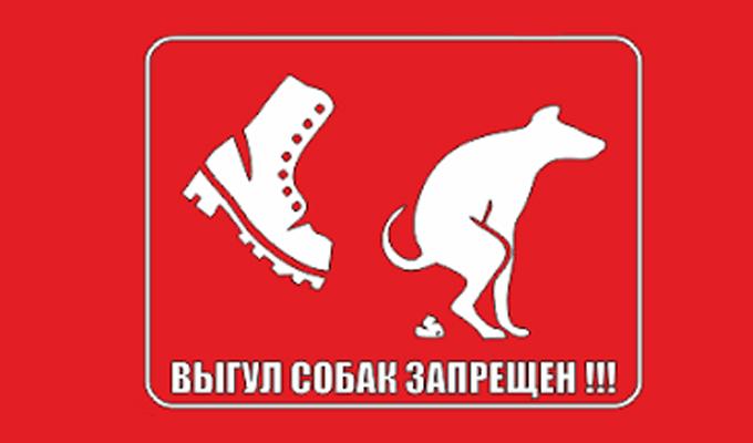 Владельцам собак запретят гулять на территориях киевских школ