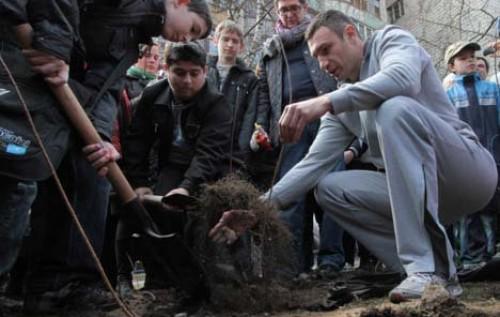 """Мэр Киева предлагает """"закопать"""" автомобили в скверах и на площадях"""