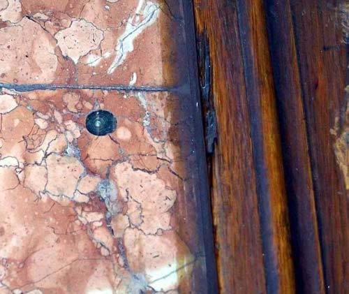 В киевском метро обнаружены доисторические монстры