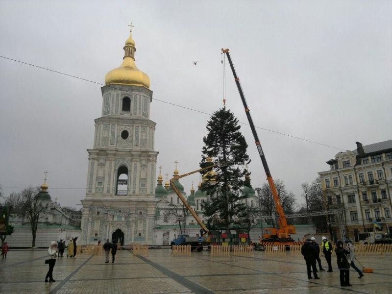 На Софийской площади уже установили главную елку