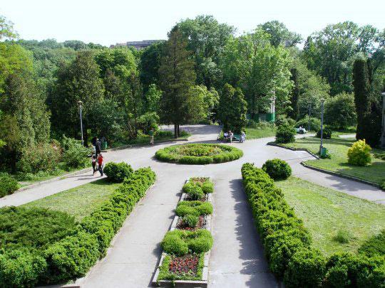 Кличко обещает сделать из Киева сплошной парк
