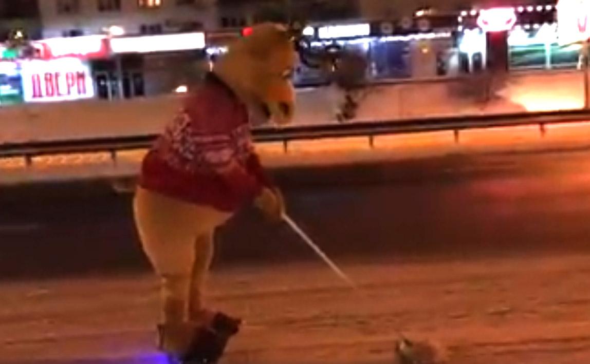 Лось на гироскутере помогал в Киеве убирать снег