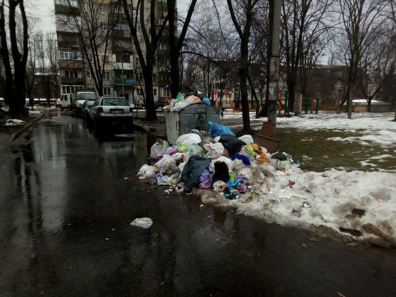 На Нивках жилые дворы завалили мусорными отходами
