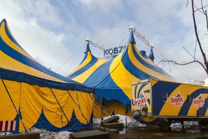 """Цирк """"Козбзов"""" в Киеве продолжает работать, несмотря на вспышку кори"""