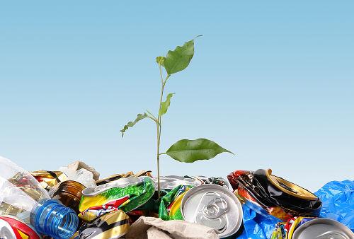 В Киеве появятся мусорные баки для опасных отходов