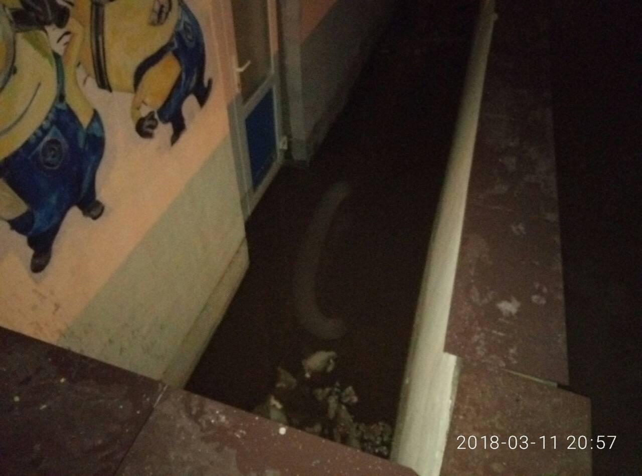 На Киевщине снег затопил жилую многоэтажку