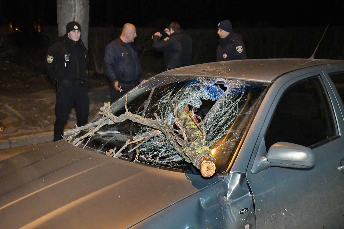 """Ветер """"уронил"""" ветку от дерева на авто с ребенком"""