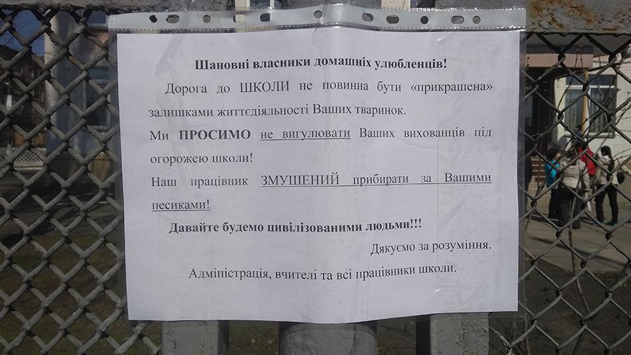 """В Киеве собаки """"испоганили"""" территорию учебного заведения"""