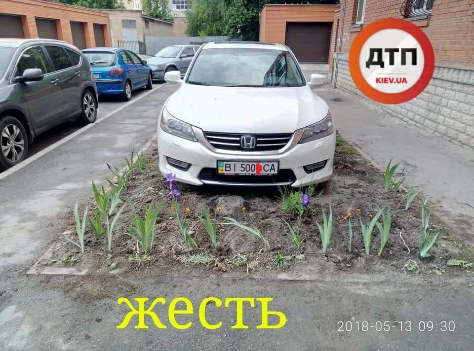 "В Киеве ""герой парковки"" припарковался в клумбе и избил мужчину за цветы"