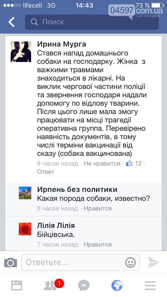 Под Киевом бойцовский пес едва не сожрал свою хозяйку