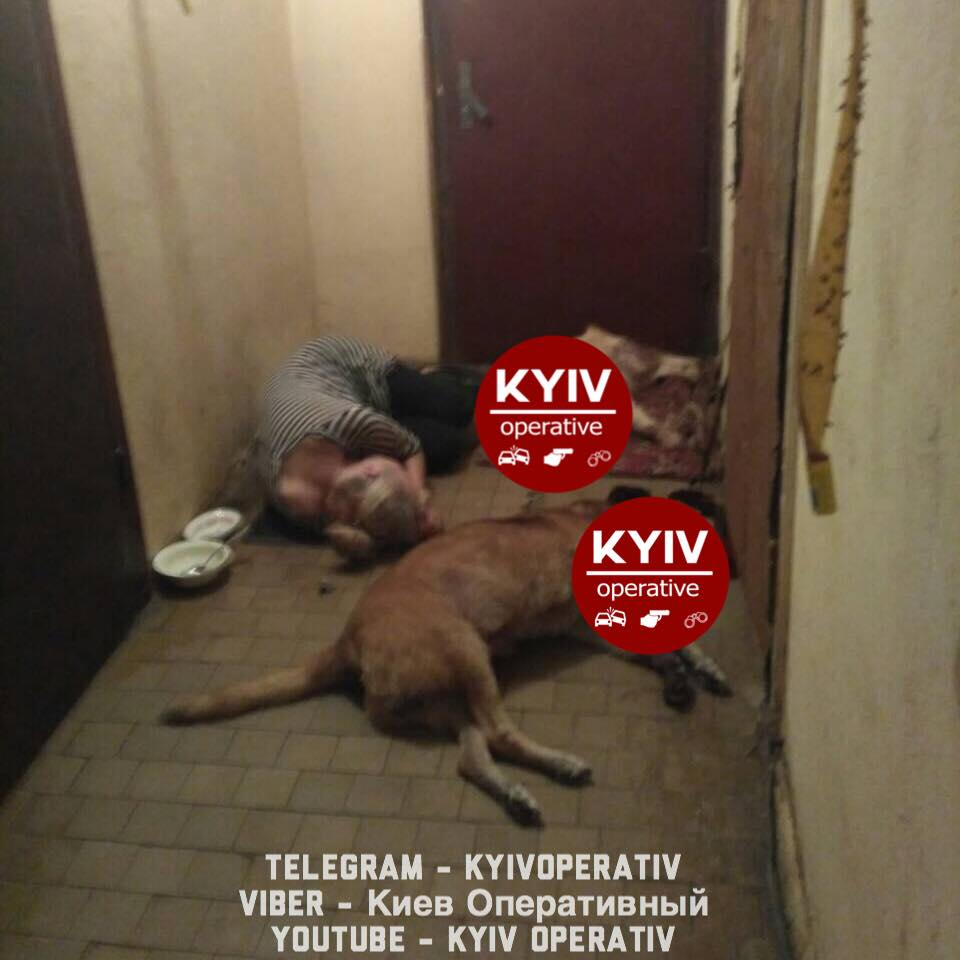 На Оболони отравили собак, которые мешали жить людям