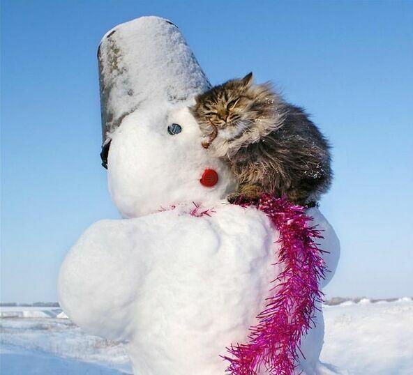 Вближайшие дни снега вКиеве небудет