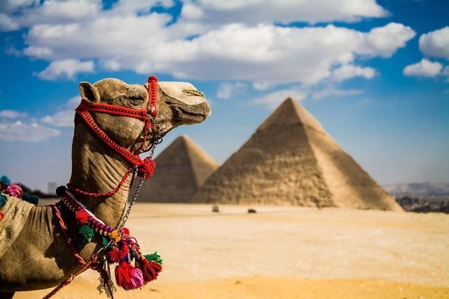 Египет – страна вечного лета