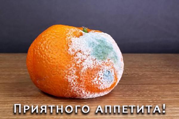 В детсаду под Киевом детей кормили гнилыми и заплесневелыми продуктами