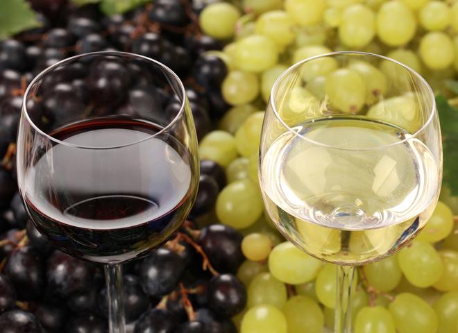 Типичные ошибки домашних виноделов-самоучек
