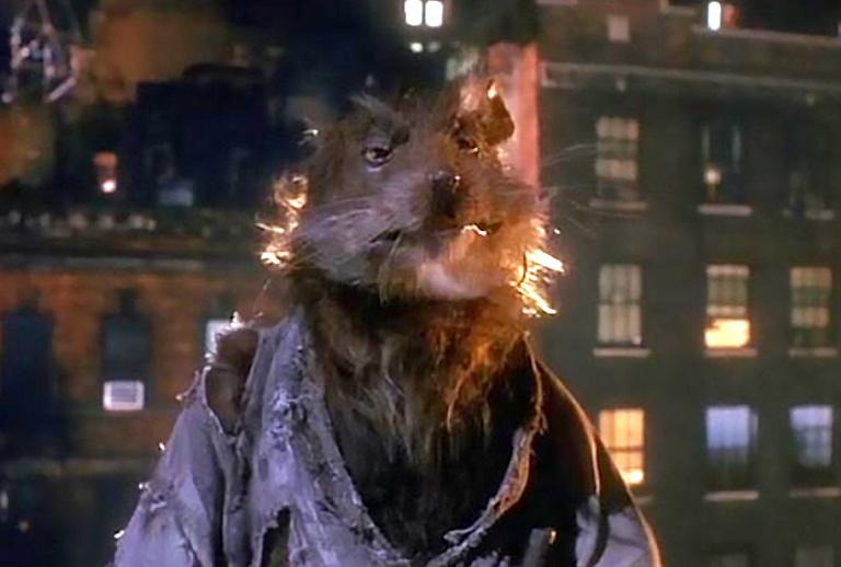 В центре Киева на людей нападают большие крысы