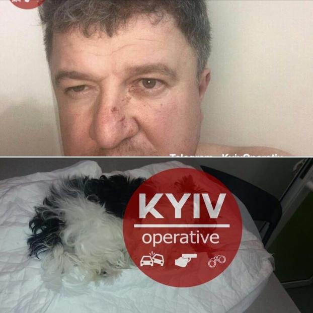 Киевский экс-чиновник избил жену и убил собачку на глазах у детей