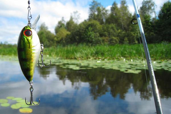 Киевлян предупредили об ответственности за рыбалку в период нереста
