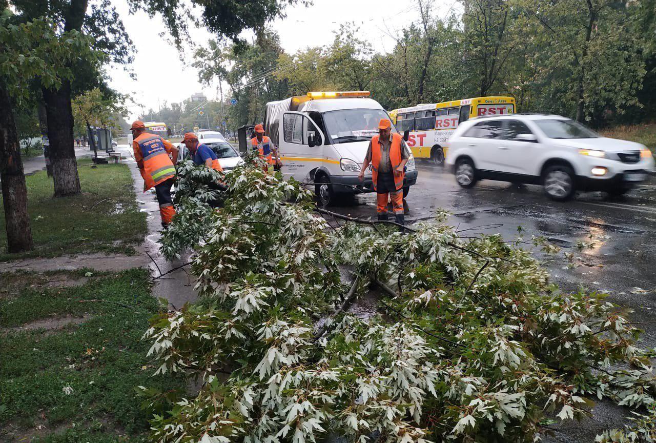 Из-за кратковременного ливня в Киеве пострадали 4 автомобиля