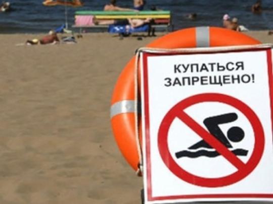 На киевских пляжах обнаружена кишечная палочка. Купаться не рекомендуется