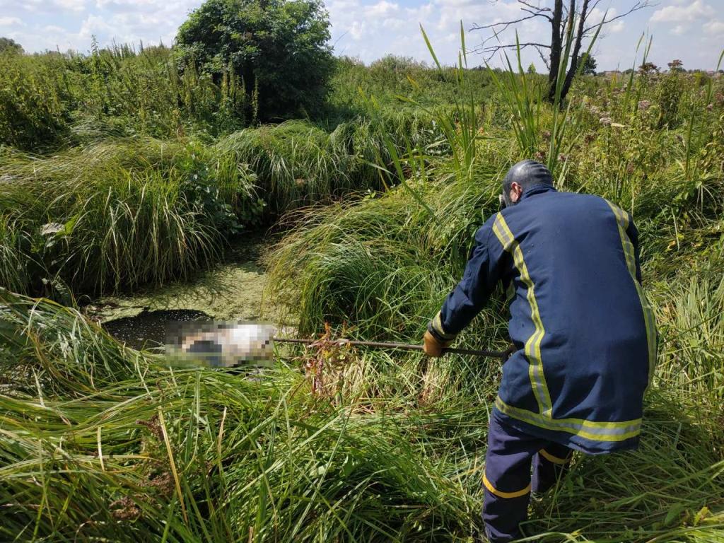 Вблизи Киева в реке нашли изуродованное тело мужчины