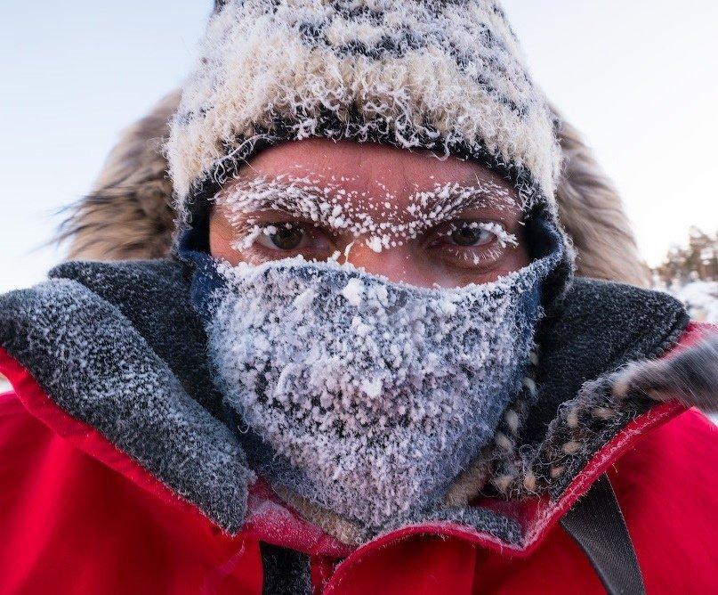 В Киеве ожидаются первые сильные заморозки