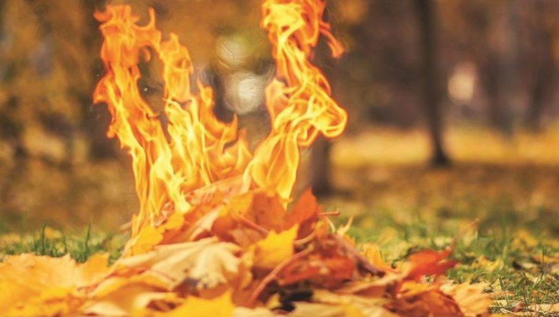 Киевлянам напомнили об ответственности за сжигание опавших листьев