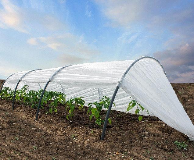 """Агроволокно - """"бронежилет"""" для сельскохозяйственных культур"""