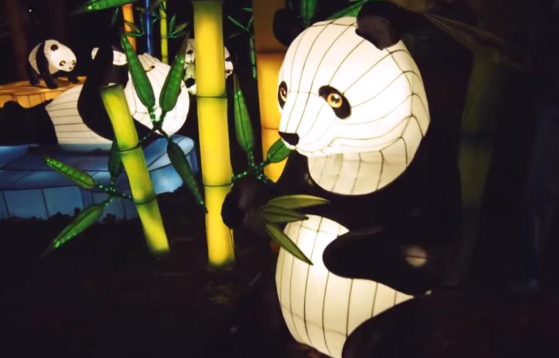 На Печерске состоится китайское новогоднее шоу