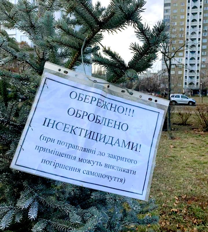 """В Киеве появились """"вонючие"""" елки, чтобы их не воровали"""
