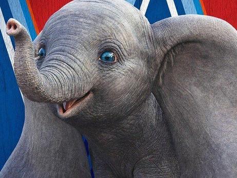 В цирках запретят использовать животных