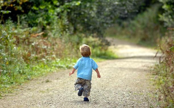 Под Киевом в лесу на болоте потерялся 4-летний ребенок