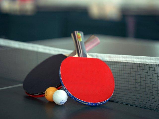 Какой теннисный стол для пинг-понга выбрать на дачу