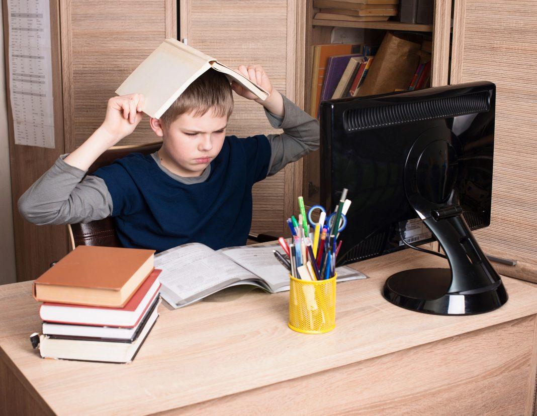 После осенних каникул в школах могут перейти на дистанционное онлайн обучение