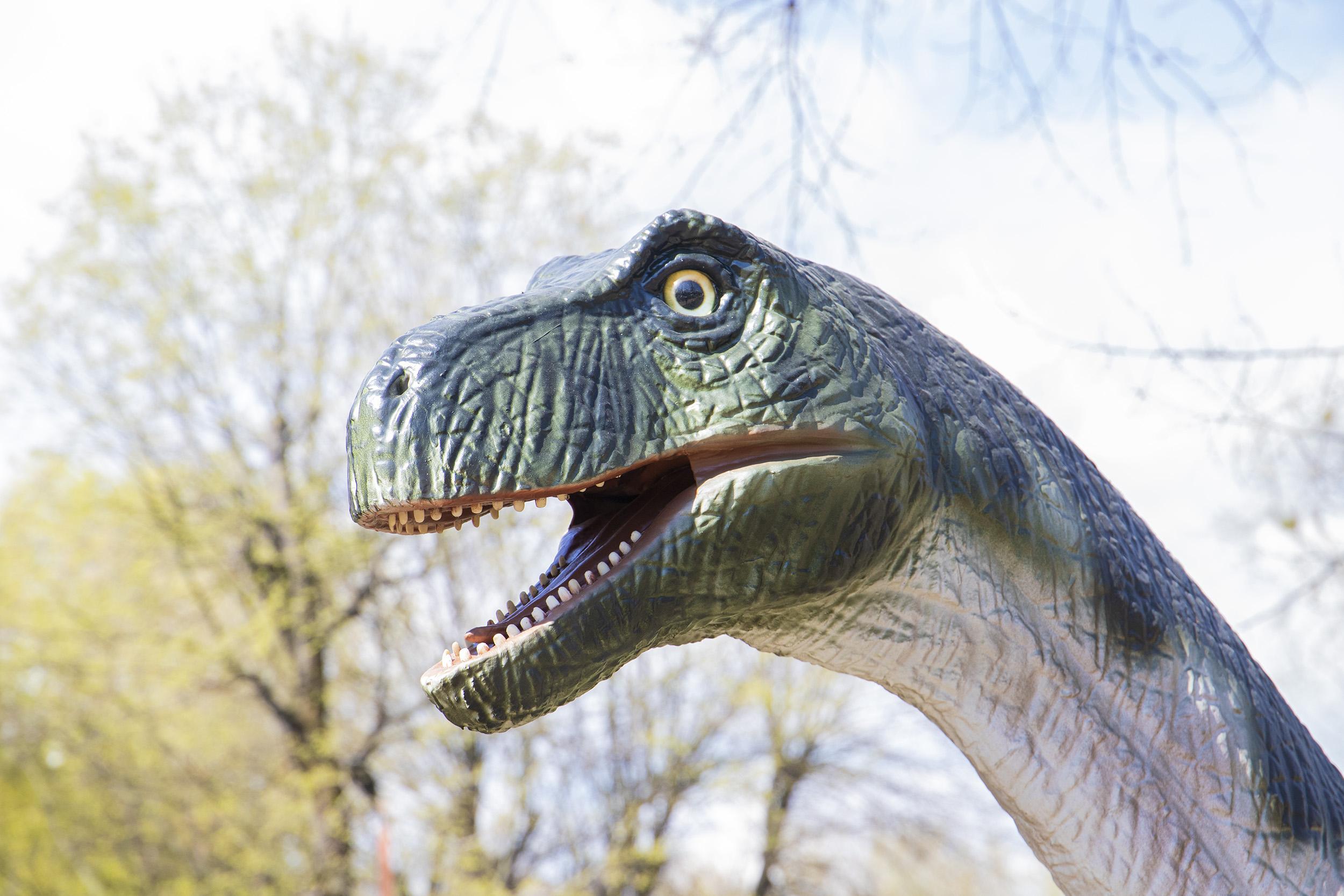 В столичном Гидропарке открывается парк динозавров